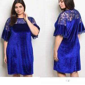 Royal Velvet Plus Size Shift Dress